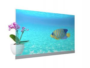 Panasonic Commercializes Transparent OLED Display Module with Superb Image Visibility